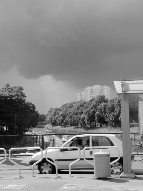Terwijl donkere wolken bendevorming plegen, blijft de zon het landschap met haar gulden gloed overgieten.
