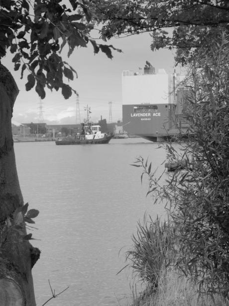 Een fleurig kader omgeeft het achteruitvaren van het vrachtschip Lavender ACE.