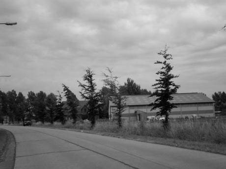 Hopend dat er toevallig geen afsluiting in beeld zou komen, waagde ik het erop en nam nog een foto van het wolkendek.