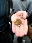 Een jongeman zal aanstonds proberen om een hoop tabak tot een sigaret te rollen. Booswichten oefenen hun honende lach wanneer dat niet blijkt te lukken.