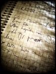 Het door regenweer geteisterde notitieboekje van de reporter. Bij mooi weer is zijn handschrift veel regelmatiger. (Echt waar.)